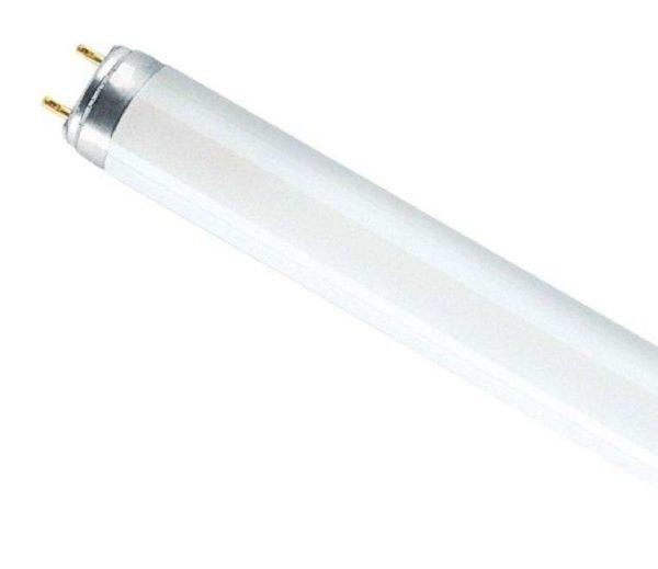 Лампа люминесцентная L 36W/840 LUMILUX 36Вт T8 4000К G13 смол. OSRAM 4008321581419