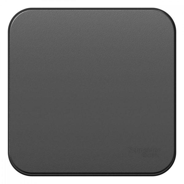 Выключатель 1-кл. ОП BLANCA (сх.1) 10А 250В изол. пласт. антрацит SchE BLNVA101016